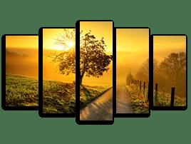 5 teilige fotoleinwand